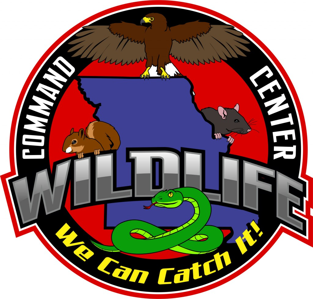 Wildlife Removal Solutions