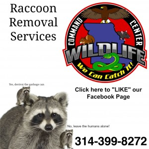 Wildlife,Command,Center,Reviews,Testimonials,314-399-8272