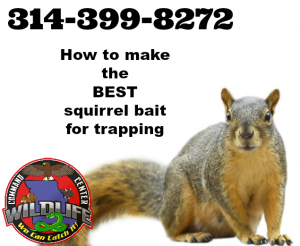How to make the best squirrel bait by Wildlife Command Center