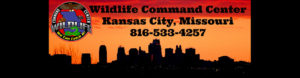 Wildlife removal Kansas City, Missouri